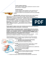 13- Funciones Cognitivas Superiores Revisar)
