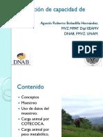 11.estimacion_carga_animalL.pdf