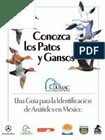Guia Acuatica.pdf