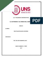 Ensayo- La Autoridad y El Mando en La Empresa -2017-Diaz Paucar.