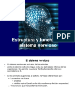 Unida2 Estructurayfuncindelsistemanervioso 120419143402 Phpapp02 (1)