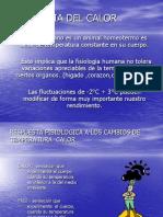 TEMPERATURAS EXTREMAS  - FISIOLOGIA