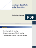 liquid_loading_in_gas_wells_remedial_operations.pdf