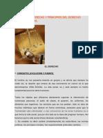 Principios Del Derecho Constitucional Marco Legal