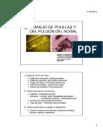 El Pulgon y La Polilla Del Nogal, Dos Nuevas Plagas Para Chile-roberto Gonzalez