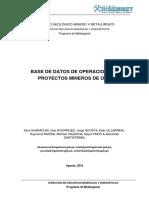 2010 GE13 Guia Base Datos Operaciones Proyectos Oro