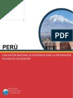 NDPBA Peru Final Report Spanish