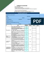 Formatos de Auditoria