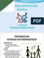 286475286 Kesehatan Reproduksi Remaja Ppt