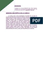 HIDRUALICA PROYECTO.docx