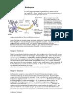 Fisiologia - Neuro