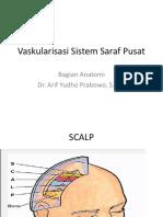 Vaskularisasi Sistem Saraf Pusat