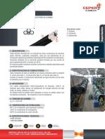 caai-s.pdf