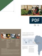 xcu_sustainability_2007_lasbambas.sp.pdf