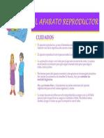 Cuidados de Aparato Reproductor