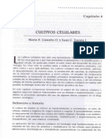 Cultivos celulares en virologia.pdf