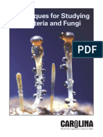 Techniques for Studying bacteria and fungi.pdf