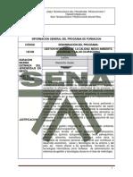 Estructura Curricular - HSEQ