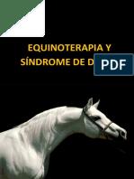 Equinoterapia y Sindrome de Down