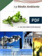 Economia y Medio Ambient