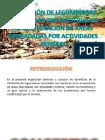 Utilización de Leguminosas Inoculadas Con Bacterias en La Recuperación de Areas