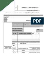 3.- Profesiograma Editable