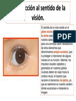 Intro Ducci on Sent i Do Del a Vision