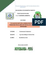 Informe Del Mercado Cont. I