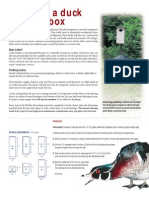 Duck Box Plans