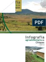 Chiapas eBook