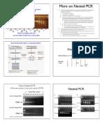 4_NestedPCR.pdf