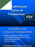 Auditoria Por Ciclos 2015