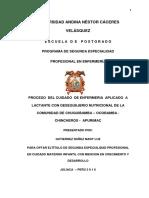 Proceso de Enfermeria Mary Luz Gutierrez Nuñez