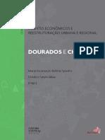 Agentes Economicos-Dourados e Chapeco