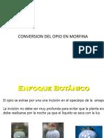 Pasos conversion del opio en morfina y heroina.pptx