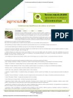 Combinaciones Beneficiosas de Cultivos en El Huerto _ ECOagricultor
