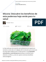 Mizuna_ Descubre Los Beneficios de Esta Poderosa Hoja Verde Para Tu Salud _ ¿Qué Más