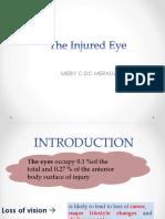 The Injured Eye