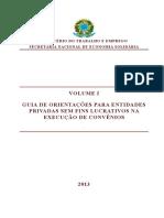 Guia de Orientações - Vol i - Entidades Privadas - Execução