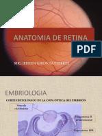 Anatomia Retina