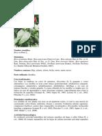 Vademecum colombiano de plantas medicinales.pdf