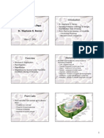Introduction_Plant.pdf