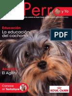 Informativos.pdf