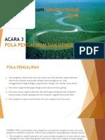 prak geomorfo drainage.pptx