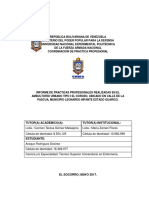 Informe Final Desiree