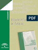 Libro Artroplastia de Cadera- Junta de Andalucia