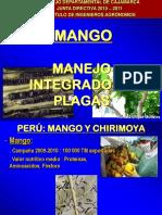 MIP MANGO