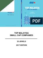 Small Cap 2017 (23) (1)