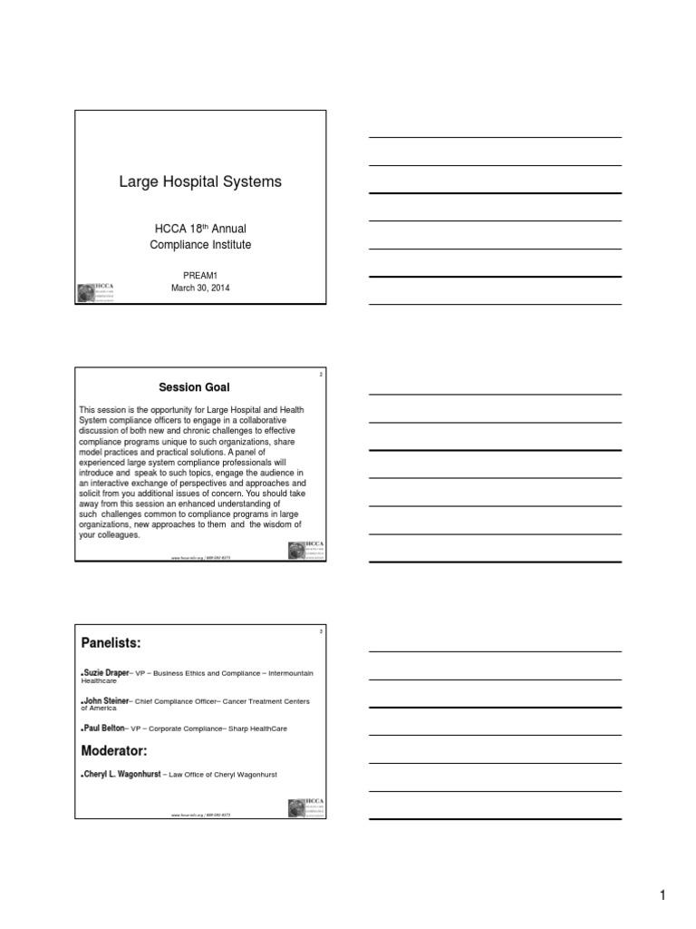 Large Hospital Systems   Internal Audit   Audit