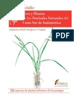 5.Guia de Campo Aves y Plantas de Los Pastizales Naturales Del Cono Sur de Sudamerica 1